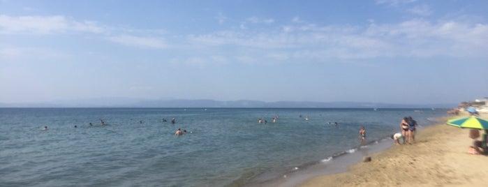 Sarımsaklı Plajı is one of สถานที่ที่ Erkan ถูกใจ.