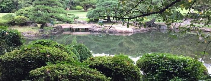 Shinjuku Gyoen is one of Tokyo.