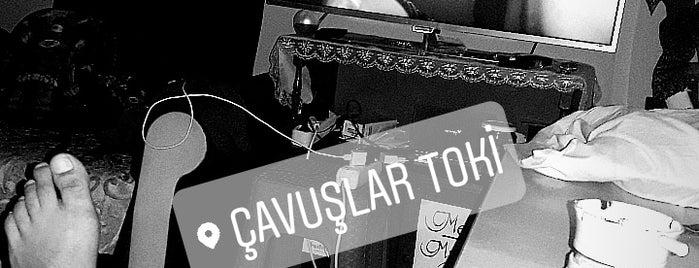 Çavuşlar Toki is one of bulunduğum yerler.