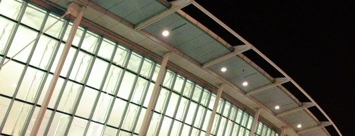 Aeropuerto Internacional John F. Kennedy (JFK) is one of Skyfall.