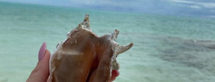 maldives sun island is one of Ahmet Turan : понравившиеся места.