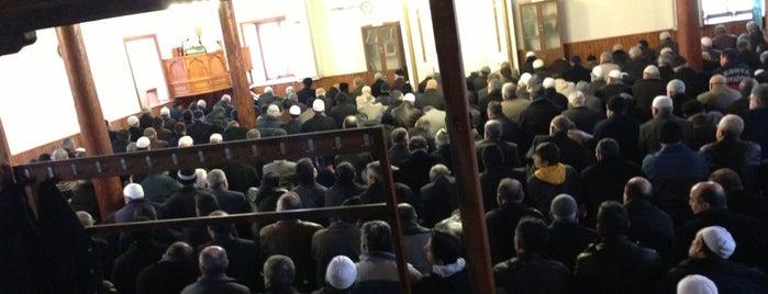 Hacı Veyis Camii is one of Konya Karatay Mescit ve Camileri.