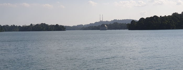 Upper Peirce Reservoir Park is one of Favourite Dating Spots #revisitSG.