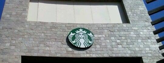 Starbucks is one of Cairo.