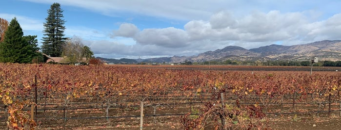 Robert Biale Vineyards is one of Wineries.