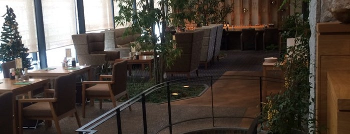 Hotel Coco Grand Takasaki is one of State of Gummar.
