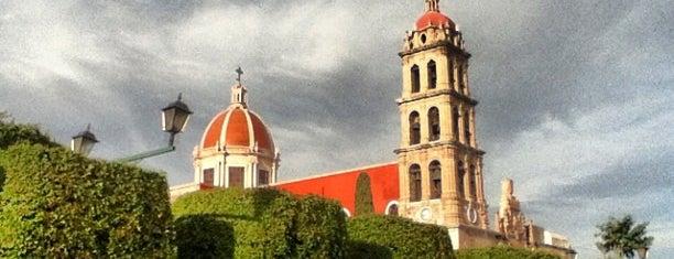 Jardín Principal is one of Locais salvos de Luis.