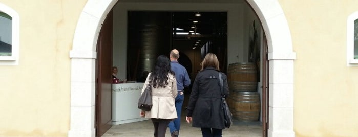 Cantina Avanzi is one of Cantine BS.