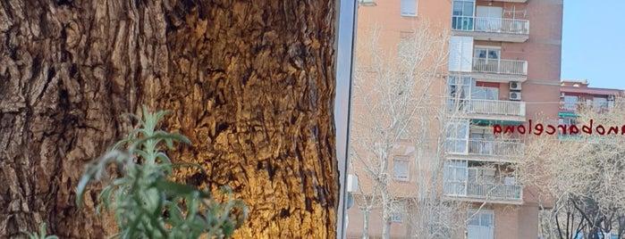 Vapiano is one of Locais curtidos por Hugo.