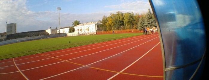 Стадион «Трудовые резервы» is one of Locais curtidos por Anton.