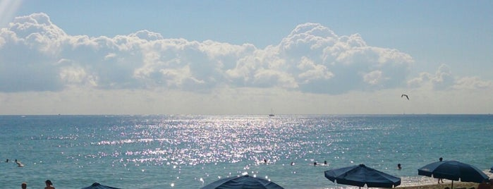 The Ocean is one of Miami.