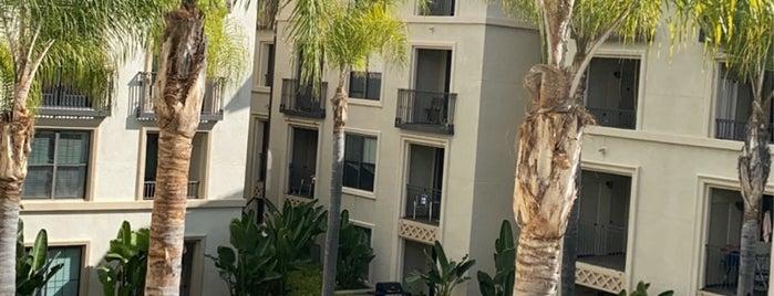 City of Irvine is one of California Memories 🌴☀️🏄🇺🇸.