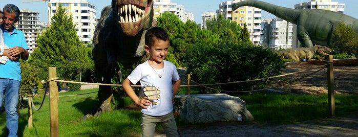 Jurassic Park is one of Locais curtidos por Şems.