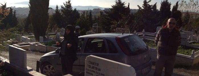 Başıbüyük Mezarlığı is one of Lugares favoritos de Mevlüt🎬〽⌚🌇🚘💯✔.