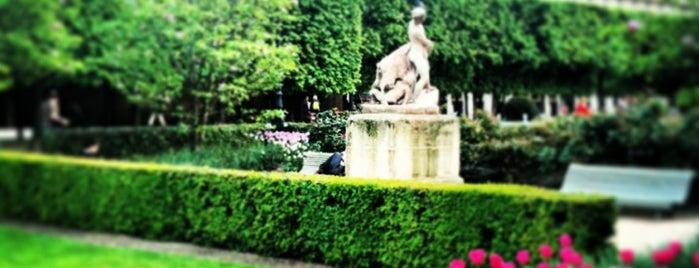 Jardin du Palais Royal is one of Jas' favorite urban sites.