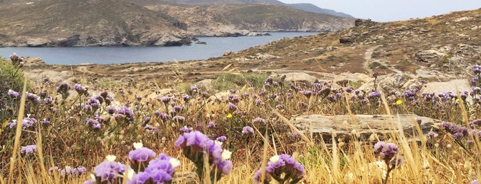 Environmental Park of Paros is one of Greece, Cyclades favorites so far.
