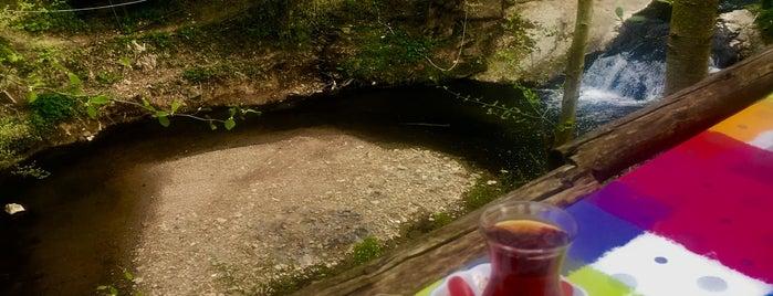 Beykoz&Et mangal is one of Orte, die Fatih gefallen.