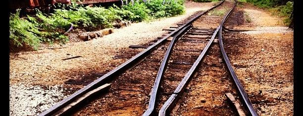 Yosemite Mountain Sugar Pine Railroad is one of 10 - Yosemite.