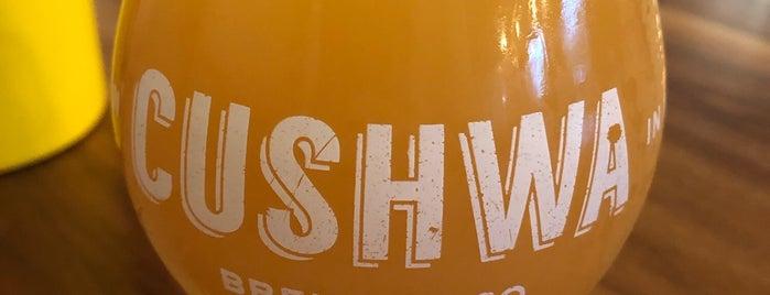 Cushwa Brewing Company is one of Locais curtidos por Cole.