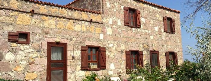Patiska Pansiyon Bağevi is one of Gusto.