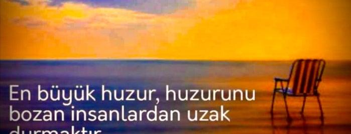 Sinpaş GYO - Aydos Country is one of Gökhan 님이 좋아한 장소.