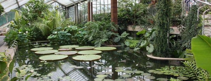 Princess of Wales Conservatory is one of London.