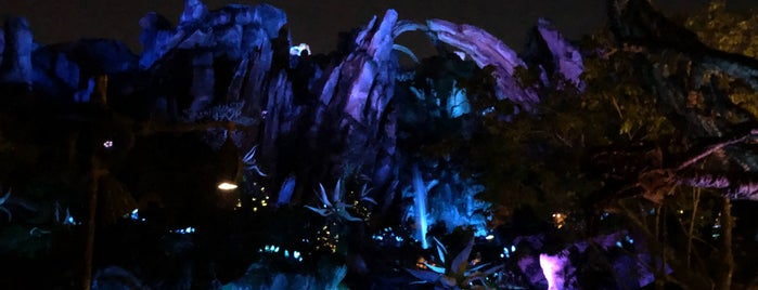 Pandora - The World of Avatar is one of Florida.