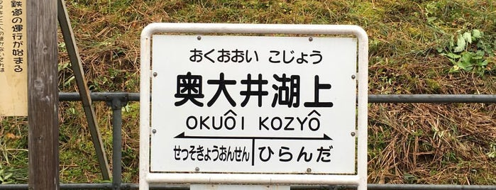 Okuoi-Kozyo Station is one of Orte, die 西院 gefallen.