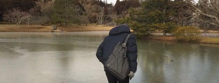 観自在王院跡史跡公園 is one of 日本にある世界遺産.