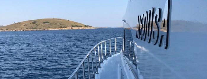 Yalniz Ada Diving Point is one of Lugares favoritos de Onur Emre📍.