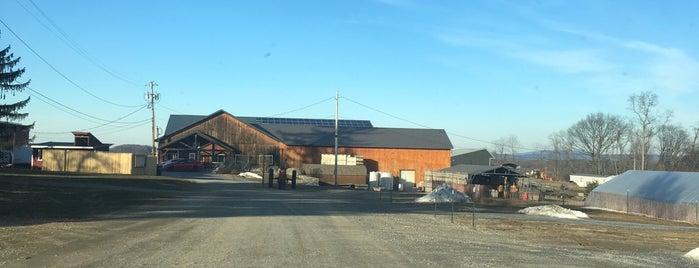 Fishkill Farms is one of Asya İmge'nin Beğendiği Mekanlar.