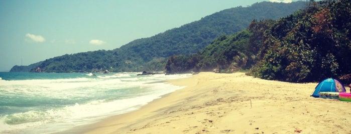 Playa Larga is one of Locais curtidos por Jimmy.