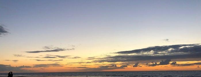 Bondi Beach is one of Lieux qui ont plu à Wim.