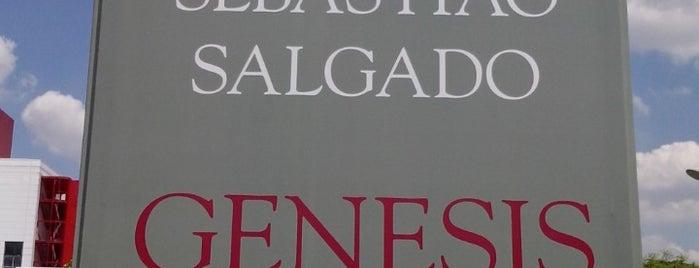 Exposição Genesis - Sebastião Salgado is one of Museus em SP.