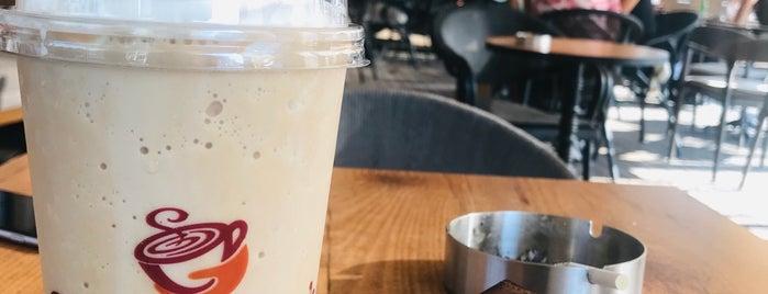 Gloria Jean's Coffees is one of Mehmet Ali 님이 좋아한 장소.