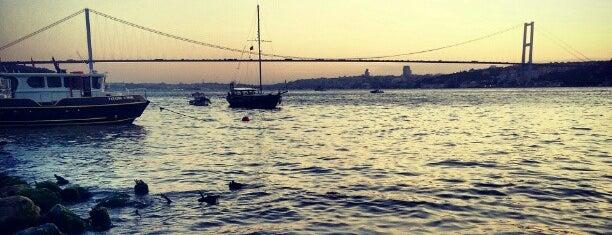 Tarihi Çınaraltı Aile Çay Bahçesi is one of Posti che sono piaciuti a Fatih.