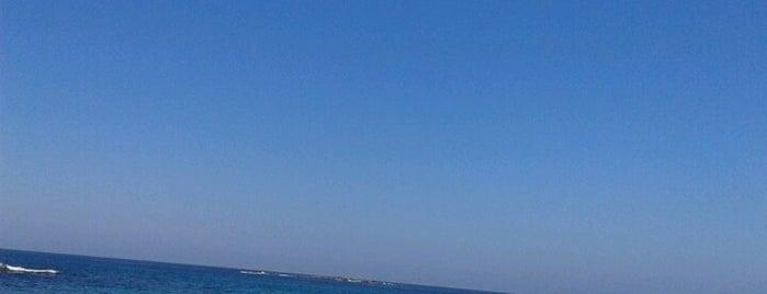 Coogee Beach is one of Australia.