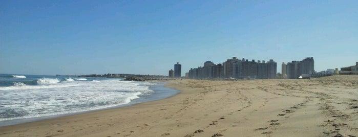 Ciudad de Miramar is one of Maru : понравившиеся места.