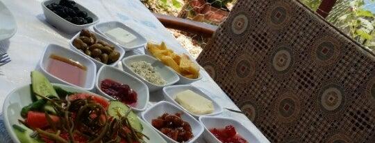 Fatihin Yeri - Yörük Kahvaltısı is one of Orte, die Caner gefallen.