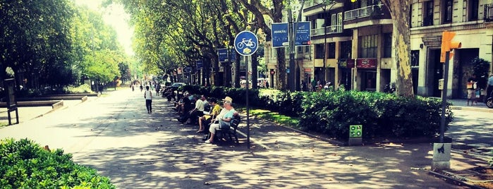 Passeig de Sant Joan is one of Barcelona.