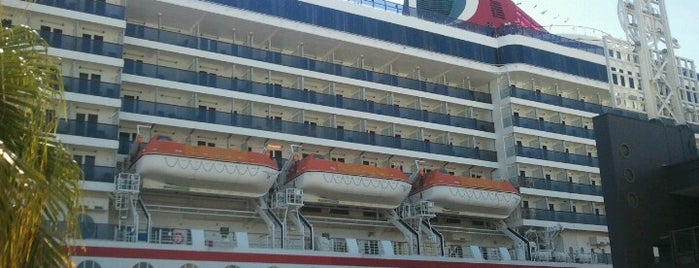 "Carnival Cruise Line Terminal is one of My ""Bucket list""."