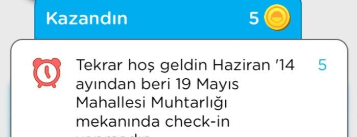 19 Mayıs Mahallesi Muhtarlığı is one of istanbul gidilecekler anadolu 2.