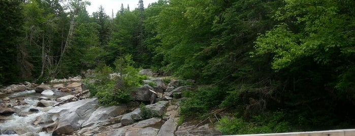 Upper Falls is one of Locais salvos de David.