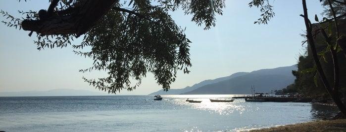 Leb-İ Derya Garden is one of Faruk : понравившиеся места.