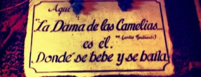 La Dama de las Camelias is one of Guanajuato.