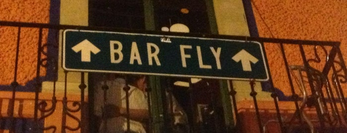 Bar Fly is one of Guanajuato by Richie.