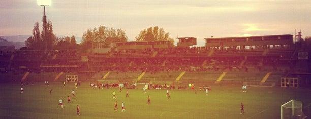 "Stadio ""Libero Liberati"" is one of Rugby."