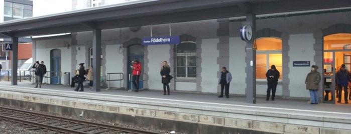To do --- www.SMS-Frankfurt.com
