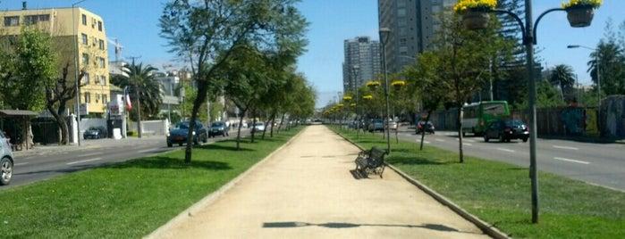 Parque Alcalde Jorge Santibañez Ceardi is one of Locais curtidos por Evander.