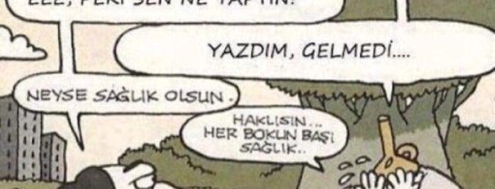 Ağaoğlu Maslak 1453 is one of Beytullah Aksoy'un Beğendiği Mekanlar.